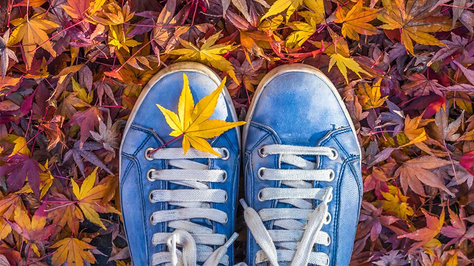Blaue Turnschuhe auf gelb-rotem Herbstlaub